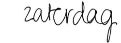 zaterdag